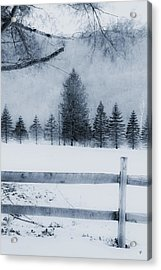 Trees In Frost Valley Acrylic Print
