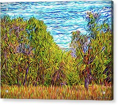 Acrylic Print featuring the digital art Trees In The Field by Joel Bruce Wallach
