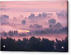 Acrylic Print featuring the photograph Trees In The Mist by Whitney Goodey