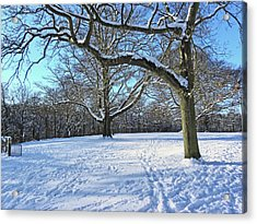 Trees In The Snow Acrylic Print