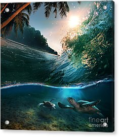 Tropical Paradise Template With Acrylic Print