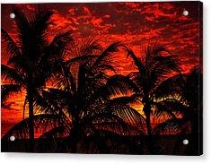 Tropical Sunrise Acrylic Print