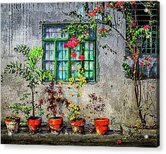 Acrylic Print featuring the photograph Tropical Wall by Michael Arend