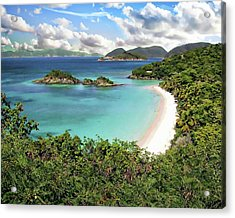 Trunk Bay Acrylic Print