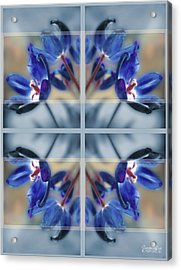 Tulips Of Stained Glass Acrylic Print
