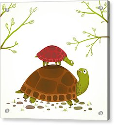 Turtle Mother And Baby Childish Animal Acrylic Print