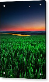 Twilight Fields Acrylic Print
