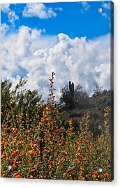 Under  A White Fluffy Cloud Acrylic Print