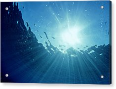Underwater Looking Up Teahupoo, Tahiti Acrylic Print by Scott Winer