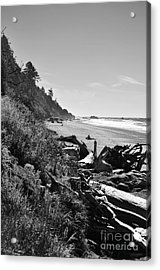 Acrylic Print featuring the photograph Untouched by Jeni Gray