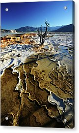 Upper Terrace Geology Acrylic Print