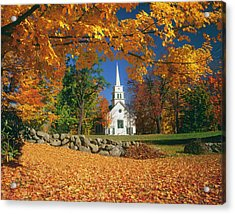 Usa, New Hampshire, Sugar Maples Acer Acrylic Print
