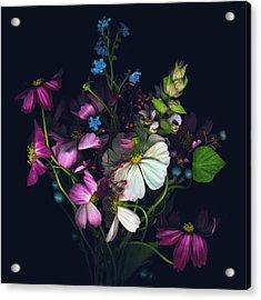 Variety Of Flowers Against Black Acrylic Print by John Grant
