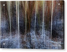 Veins Of Forest Acrylic Print