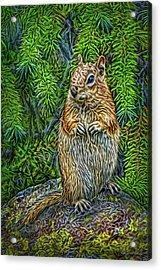 Acrylic Print featuring the digital art Vigilant Chipmunk by Joel Bruce Wallach