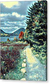 Vincent Does Acadia Acrylic Print