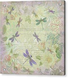 Vintage Botanical Illustrations And Dragonflies Acrylic Print