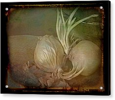 Acrylic Print featuring the mixed media Vintage Onions 3 by Lynda Lehmann