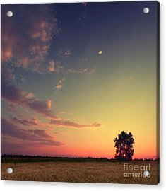 Vintage Picture. Sunset With Moon And Acrylic Print