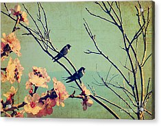 Vintage Spring Image With Swallows And Acrylic Print