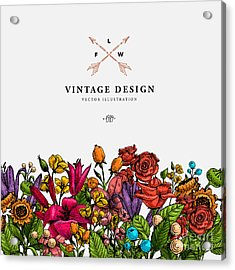 Vintage Vector Card With Engraving Acrylic Print