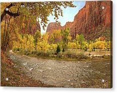 Virgin River Canyon In Autumn Acrylic Print by Leland D Howard