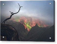 Waimea Canyon Acrylic Print
