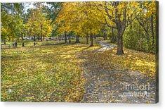 Walk In The Park @ Sharon Woods Acrylic Print