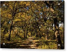 Acrylic Print featuring the photograph Walking Through Fall by Scott Bean