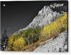 Acrylic Print featuring the photograph Waning Gibbous Moon Autumn Monarch Pass Bwsc by James BO Insogna