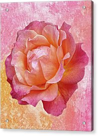 Warm And Crunchy Rose Acrylic Print