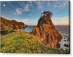 Warm And Peaceful Coast Acrylic Print by Leland D Howard