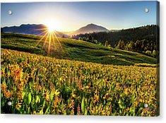 Warm Spring Sunrise 2 Acrylic Print by Leland D Howard