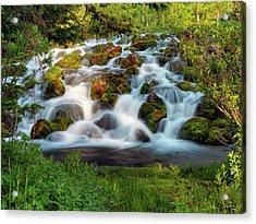 Wasatch Range Cascade Acrylic Print by Leland D Howard