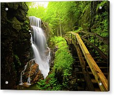 Water Falls In The Flume Acrylic Print