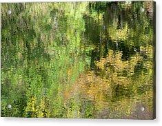 Water Reflection_598_17 Acrylic Print
