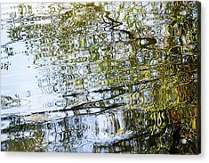 Water Reflection_74_17 Acrylic Print