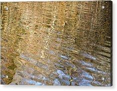 Water Reflection_751_18 Acrylic Print