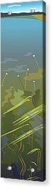 Water Weeds Acrylic Print by Marian Federspiel