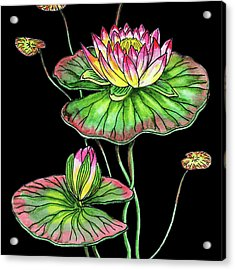 Watercolor Flower Waterlily Acrylic Print