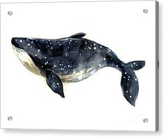 Watercolor Sketch Blue Whale Acrylic Print