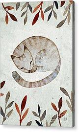 Watercolor Sleeping Cat Illustration Acrylic Print