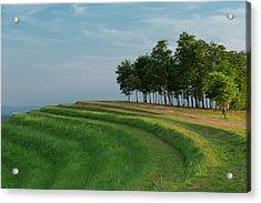Waves Of Grass Acrylic Print