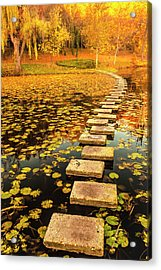 Way In The Lake Acrylic Print