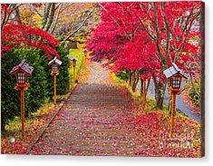 Way To Chureito Pagoda In Autumn Acrylic Print