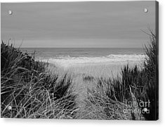 Acrylic Print featuring the photograph Westport Red Filter by Jeni Gray