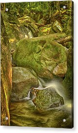 Wet Rocks Acrylic Print