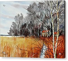 Wetlands Edge Acrylic Print by Art Scholz