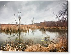 Wetlands On A Dreary Day Acrylic Print