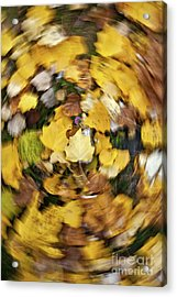 Whirlpool Of Autumn Acrylic Print